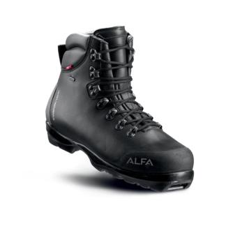 Kjøp Alpina Bc 1550 med gratis frakt på nettet